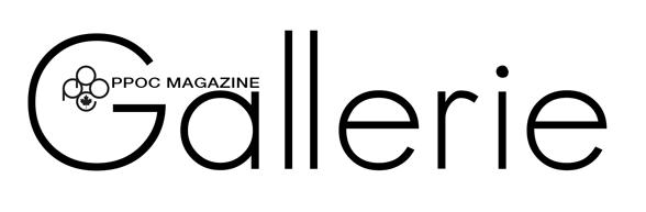 Magazine Gallerie