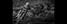 Skid Row - © Jason Bowie